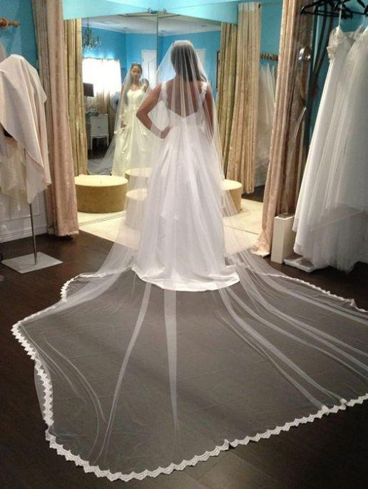 Wedding veil with lace trim.